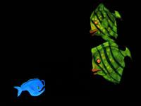 Sindra silfurfiski boðið á Bibu barnaleikhúshátíðina